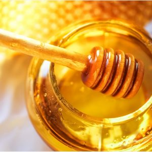 The Benefits of Bees and Their Dangers