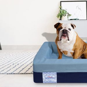 Choosing The Best Bed For Your Best Friend